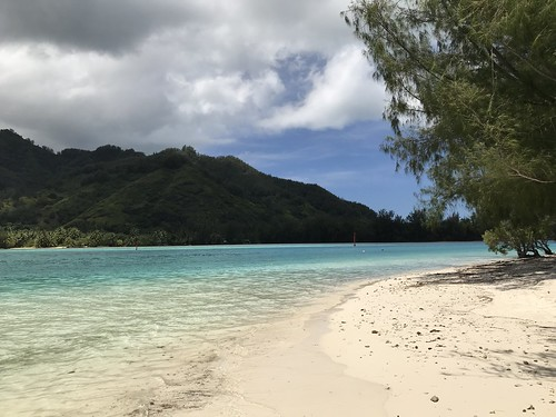 Sparkling South Pacific, March 2018