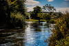 A scene of summer (The Frustrated Photog (Anthony) ADPphotography) Tags: category citiestowns england places salisbury travel wiltshire travelphotography landscapephotography river water sky clouds trees summer grass meadow nature natural countryside rural uk unitedkingdom greatbritain outdoor canon1585mm canon70d canon