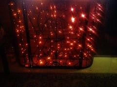 La garçonnière (Gilbert-Noël Sfeir Mont-Liban) Tags: garçonnière rouge rot red licht lumières lights kesserwan montliban liban mountlebanon lebanon intérieur interiors interior tapis carpet vert green