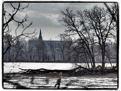 verwunschen (1elf12) Tags: klosterkirche mittelteich riddagshausen braunschweig germany deutschland trees stmariae 7dwf