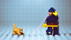 Meanwhile in the Danger Room... (3rd-Rate Photography) Tags: cyclops lego cat mar xmen mutant laser laserpointer funny comicbook vómaria canon 5dmarkiii 100mm macro jacksonville florida 3rdratephotography earlware 365