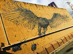 Take Flight by Dal East (wiredforlego) Tags: graffiti mural streetart urbanart aerosolart publicart powwowhawaii powwow oahu hawaii honolulu daleast yellow
