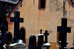 Les croix noires  -  Black crosses  (1) (Philippe Haumesser Photographies (+ 6000 000 view)) Tags: cimetière cimetières cemetery cemeteries croix cross crosses noiretblanc blackandwhite monochrome riquewihr alsace elsass france hautrhin 68 nikond7000 nikon d7000 reflex 2018 neige snow hiver winter