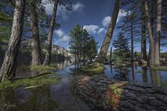 L'Ospédale (Corsica) (Mathulak) Tags: ospedale uspidali corse corsica porto vecchio d750 mathulak forêt montagne lac