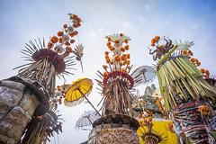 around Pura Penataran Sasih (kuuan) Tags: manualfocus mf voigtländercolorskoparf421mm voigtländer color skopar f4 21mm ilce7 sonya7 pejeng bali indonesia purapenataransasih festival umbrellas ceremonialumbrellas padmasana