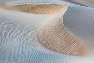 Sand Creature