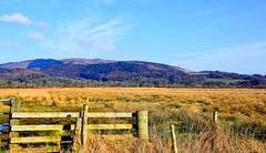 Mersehead RSPB (Joan's Pics 2012) Tags: merseheadrspb meadows wildlife mountain gate grasses blueskies
