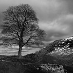 Hadrians Wall at Housesteads thumbnail