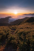 Sunset over sea of clouds (ELX_Images) Tags: lines landscape asia elxphotography nature taiwan sundown outdoor hehuanshan recreation perspective clouds sun seaofclouds serenity holiday sunset fall hiking sky colors green sunstar relax plants light