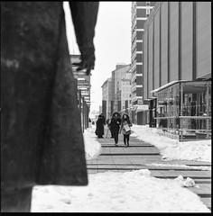 Last snow in march (gsantar) Tags: rolleiflex integral sonnar 150mm f4 zeiss 120 format medium osijek gsantar šantar goran film bw