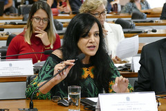 CCS - Conselho de Comunicação Social (Senado Federal) Tags: ccs reunião fakenews notíciafalsa mariajosébraga anteprojeto redesocial eleição2018 brasília df brasil bra