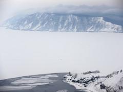 Lake Baikal 貝加爾湖 (MelindaChan ^..^) Tags: birch trees 樺 樹 樺樹 trunk wood plant winter snow branch chanmelmel mel melinda melindachan frozen ice 俄羅斯 lake baikal 貝加爾湖 siberia 西伯利亞 russia