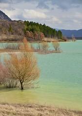 nuova luce (robra shotography []O]) Tags: paesaggio landscape windy light sooc trees lake colours dof planes
