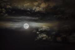 Luna de noviembre (Ignacio M. Jiménez) Tags: lunallena noviembre fullmoon nubes clouds nocturna noche night ignaciomjiménez ubeda jaen andalucia andalusia españa spain