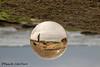 Beach Reflections (ChrisF_2011) Tags: crystalball glass reflection florida marineland rivertosea beach scenic landscape sand coquina