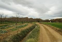 Caminos (kirru11) Tags: camino huertas árboles campo acequia castillo peñas rocas cielo casilla nubes quel larioja españa kirru11 anaechebarria canonpowershot