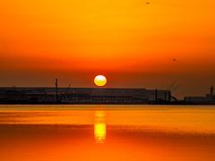 Morning light (dayonkaede) Tags: olympus em1markii m12100mm f40 solar morning dusk sky sun canal river estuary airport