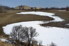 _DSF2645 (Vladimir Gazoukin) Tags: canada country vladimirgazoukin orillia winter snow sky landscaping trees