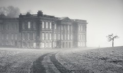 Timeless Mist (Captain Nikon) Tags: calkeabbey nationaltrust countryhouse decline ticknall derbyshire england greatbritain uk timeless harpurfamily grade1listed listedbuilding lonetree silhouette moody atmospheric timecapsule bygone nikon nikon18105mm nikond7100 outdoorphotography landscapephotography monochrome mist fog foggy winter