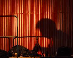 Glenn Buschmann_26 (Kurrat) Tags: dortmund ruhrgebiet jazz domicil jazzclub musik konzert inmemoriamrainglenbuschmann glenbuschmann