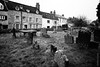 DSC00008 (FlickrDelusions) Tags: oxford standrewschurchyard oxfordshire oldheadington sony bw blackandwhite headington ilce7m3 england unitedkingdom gb