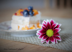 flower and cake (aika217) Tags: canon eos 77d ef50mm f18 stm cake