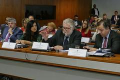 CCS - Conselho de Comunicação Social (Senado Federal) Tags: ccs reunião fakenews notíciafalsa anteprojeto redesocial eleição2018 sydneysanches mariajosébraga daviemerich miguelmatos brasília df brasil bra
