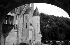 courtanvaux-7 (xtrice) Tags: château courtanvaux bessésurbray sarthe paysdeloire ubuntu rawtherapee gimp noiretblanc