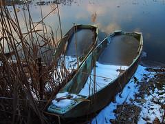 La coppia - The couple (Ola55) Tags: ola55 italy lago lake trasimeno barche boats blue blu freddo cold neve snow winter inverno water acqua riflessi reflections tramonto sunset clouds nuvole nubi italians aplusphoto worldtrekker