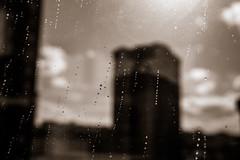 Gotas de lluvia - Gijon (Juan José Pérez) Tags: gijon asturias gotas drops window