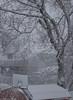 At the heart of the storm. (kuntheaprum) Tags: winterstorm skylar blizzard 15footersnow nikon d5300 tamron samyang f14 85mm