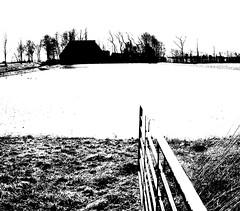P1010242 (CloudBuster) Tags: meadow weilanden groen green countryside platteland friesland water open view uitzicht farms boederijen shadows schaduwen black white zwart wit
