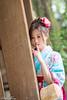 DSC_9089 (Robin Huang 35) Tags: 陳思綺 pocky 桃園神社 神社 和服 二尺袖 卒業服 袴 人像 portrait lady girl nikon d810