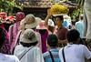 A contracorriente!! (Juanjo RS) Tags: juanjors bali puratirtaempul indonesia balinesa templo templopuratirtaempul asia banana nikond7100 nikon amateur