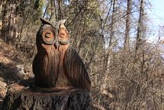 la chouette (bulbocode909) Tags: valais suisse sculptures chouettes bois forêts arbres nature montagnes vert bleu