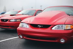 2003 & 1995 Ford Mustangs (dmesser92) Tags: carsandcoffee carscoffee carsandcoffeeoftheupstate carscoffeeoftheupstate carshow carmeet car truck automotive fordmustang ford mustang sn95 newedge convertible coupe vsco
