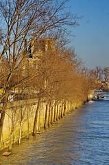 477 Paris en Février 2018 - Quai des Tuileries (paspog) Tags: paris france quaidestuileries seine crue flood inondation février februar february 2018