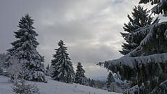 Neulich war Winter (niedersachsenfoto) Tags: winter winterlandschaft bergwelt hohermeisner werrameisnerkreis nordhessen hessen niedersachsenfoto explore