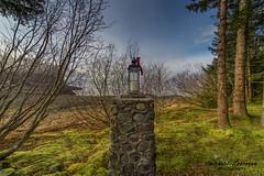forest light 3 (tinpenak) Tags: 2018 fog shrine winter