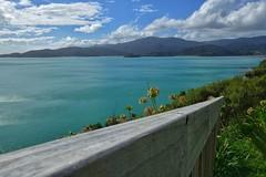 Railing on Long Bay (Sam-Henri) Tags: railing newzealand coromandel longbay blue water green travel pointandshoot wood bay sky cloud sony rx100 mkii mk2 sea landscape nature