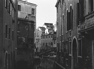 valley of the calm trees (venezia 80)