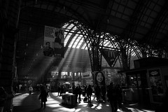Hauptbahnhof Station sun and shadows (Sam García GA.) Tags: frankfurt germany europe blackandwhite trains people station