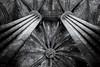 cathedral bcn (R.Toro) Tags: noiretblank blackwhite blancoynegro film35mm film cathedral churchs nikon iso3200 kodak bcn barcelona gótico