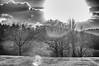 Compagnons, Companions (laurent.smet) Tags: couchédesoleil paysage sunset landscape dordogne