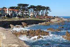 IMG_7620 (mudsharkalex) Tags: california pacificgrove pacificgroveca