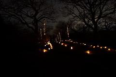 Iwamoto Mountain Park (ULTRA Tama) Tags: iwamoto mountain park japan shizuoka fuji candle spring mtfujiwhc