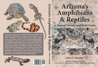 Arizona's Amphibians and Reptiles Guidebook is now available!