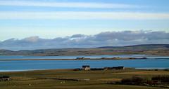 Stenness and Harray lochs (stuartcroy) Tags: orkney island scotland sony scenery sky still stenness harrayloch harray beautiful blue