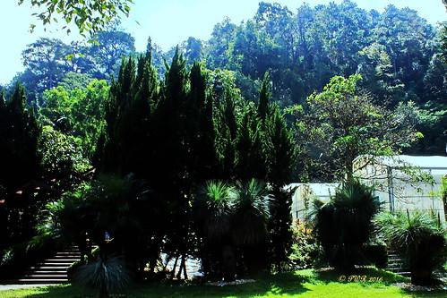 Queen Sirikit Botanic Gardens.