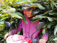 Minority village near Prao (NoDurians) Tags: cinnamonleaves centralhighlands minorities hochiminhpath centralvietnam prao quangnam cotu